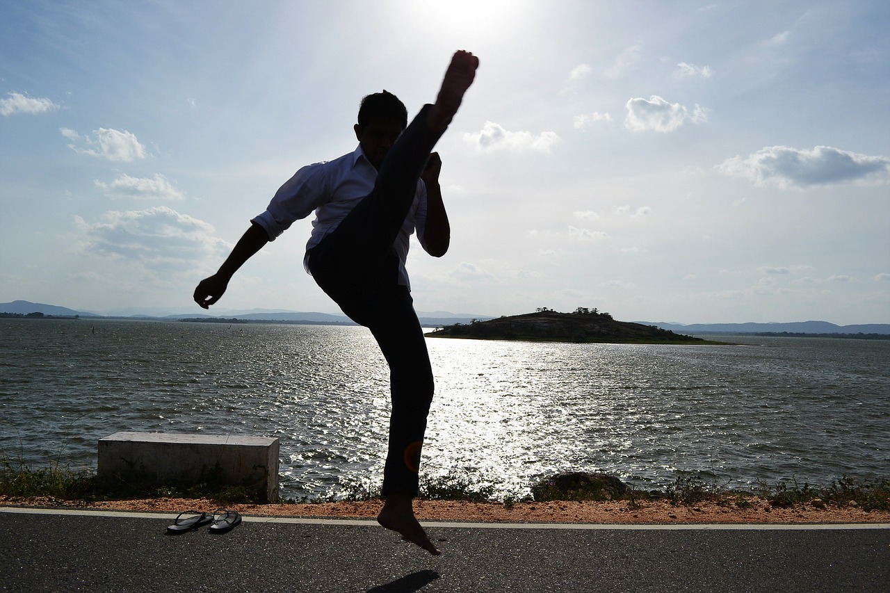 how to get fit at home,Learn Martial arts